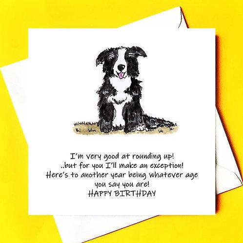 Sheepdog Birthday Card