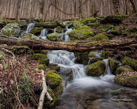 "Smoky Mountain Brook (20""x16"")"