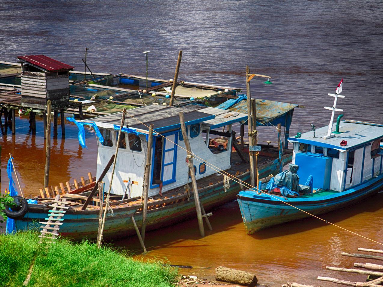 Boats On The Kapuas River