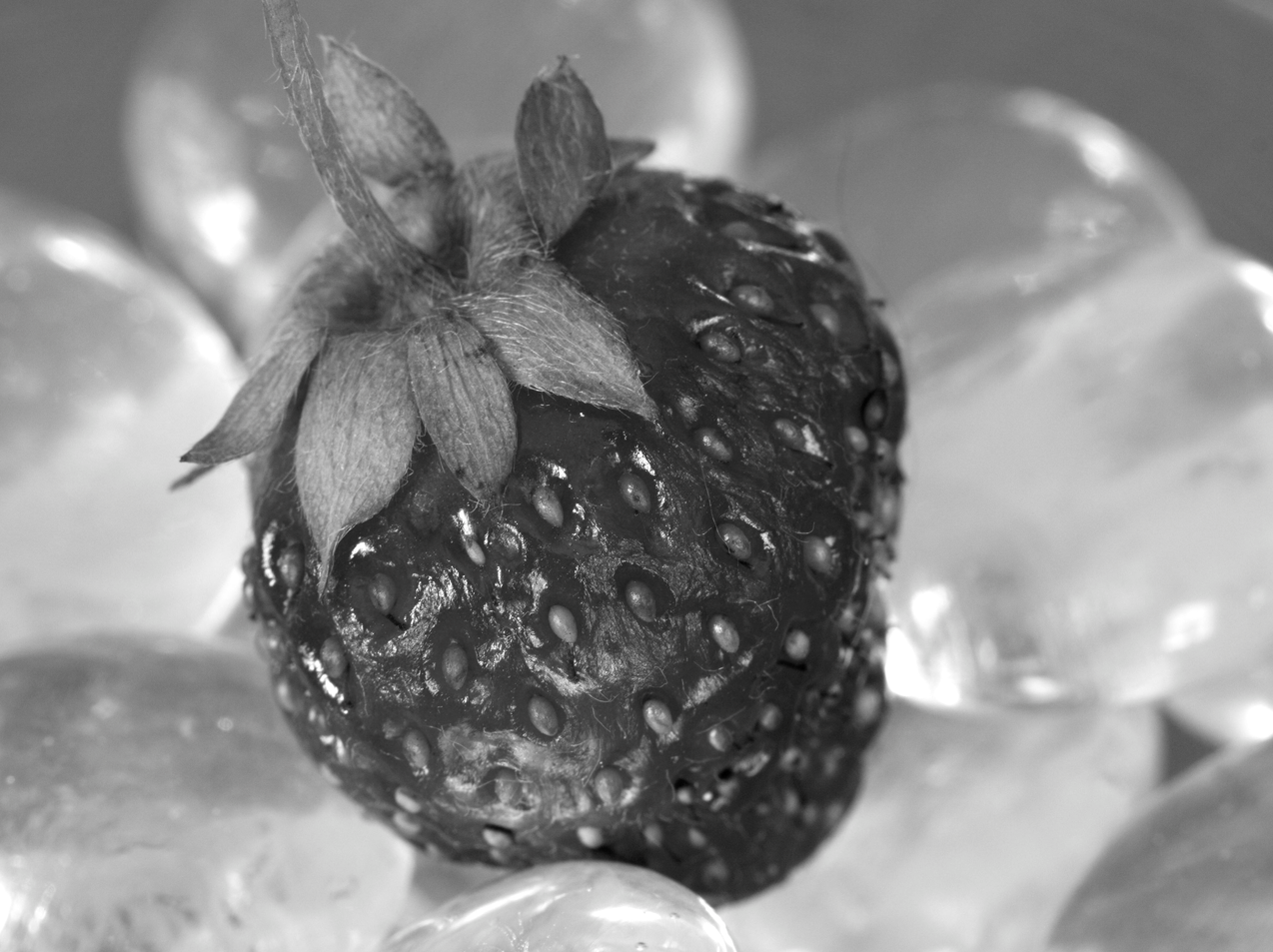 An Iced Strawberry