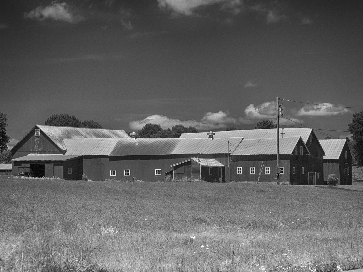 A North Hero Farm
