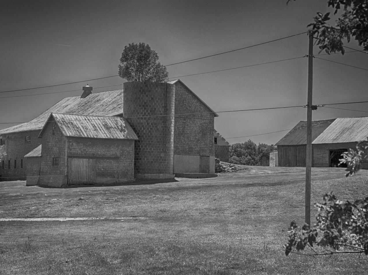 A Grand Isle Farm