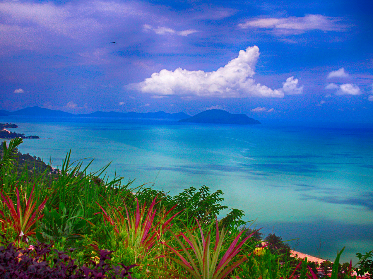 The Beauty Of The South China Sea