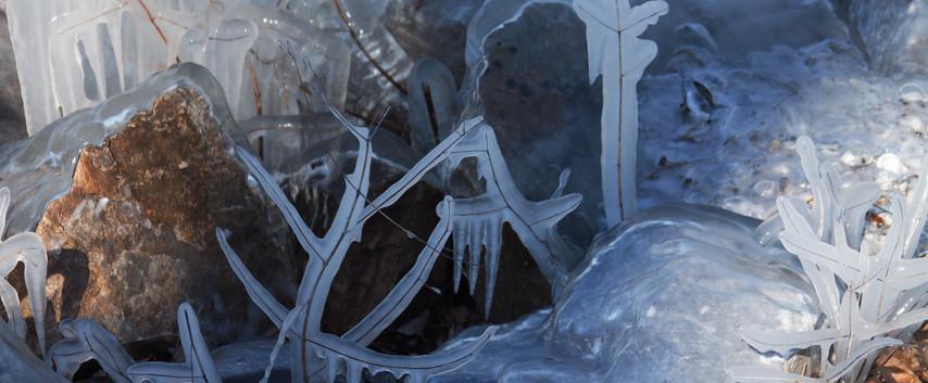 Ice Figures