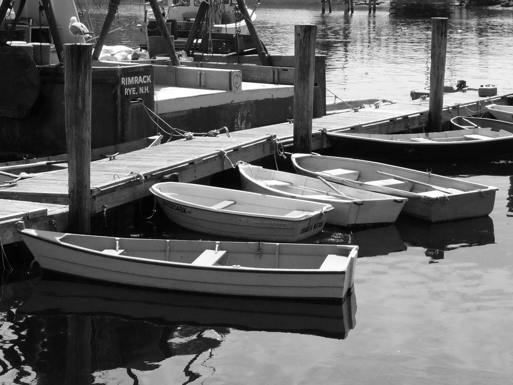 Rye Harbor Tenders