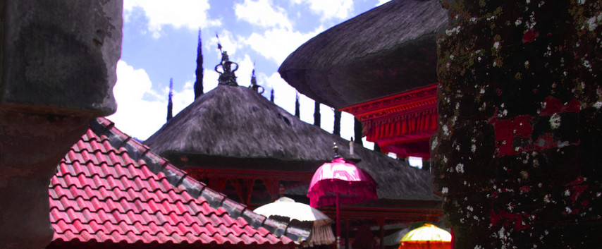 A Bali Perspective