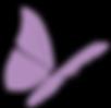 purple-butterfly-md.png