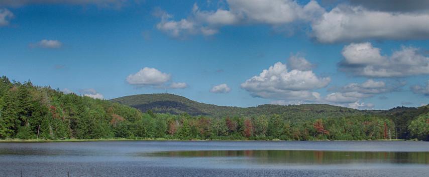 A Wilderness Pond
