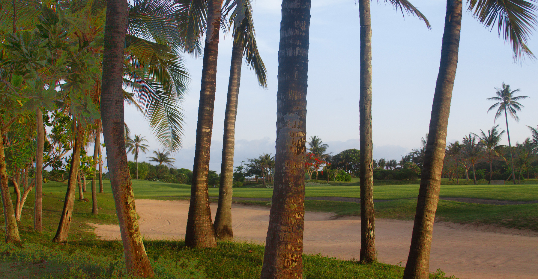 Golf, Anyone??