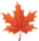 Maple-leaf-clip-art-clipartion-com-2.png