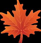 Maple-leaf-clip-art-clipartion-com-2.png