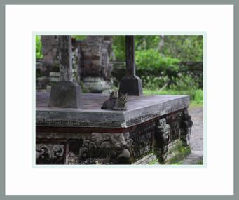 2010_09_26_7070-CrLeCe-Bali Fr Gry.jpg