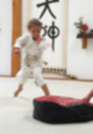 Aikido Kids and Children Classes at Grass Valley Aikikai