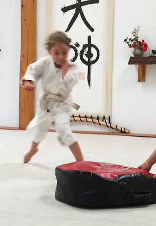 Aikido Kids and Children Classes at Grass Valley Aikikai