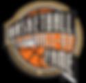 basketball hall of fame.png