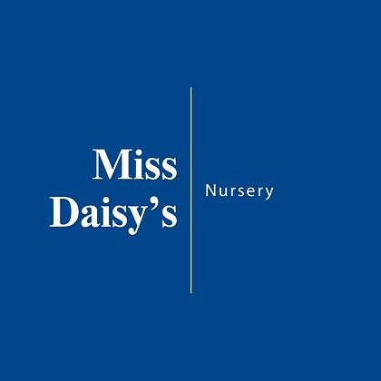 Miss Daisy's | Nursery