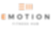 EMotion_orange_logo.png