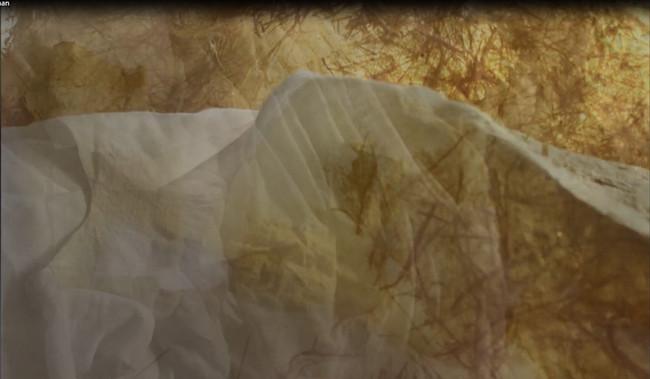 Opaque Matter: Tracing Maternal Landscap