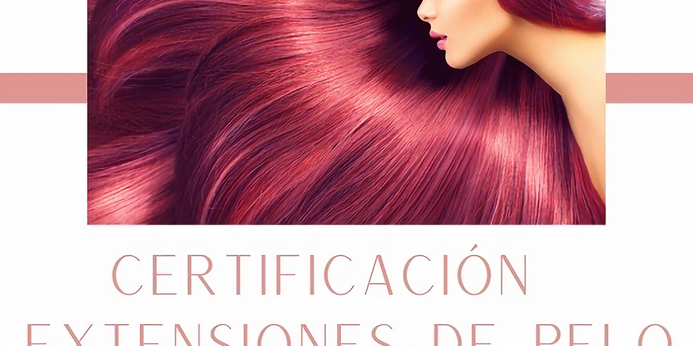 Tampa, FL Hair Extension Course