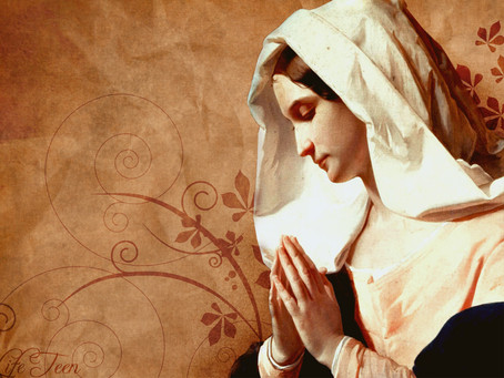Our Lady's Knowledge