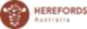 Herefords-Australia-2018-300.png