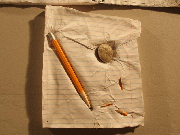 The Print of Writing_Leu