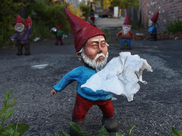 Gnome and Home_Leu