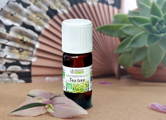 Huile Essentielle Tea Tree Bio ou Arbre à Th / Melaleuca Alternifolia / Feuilles