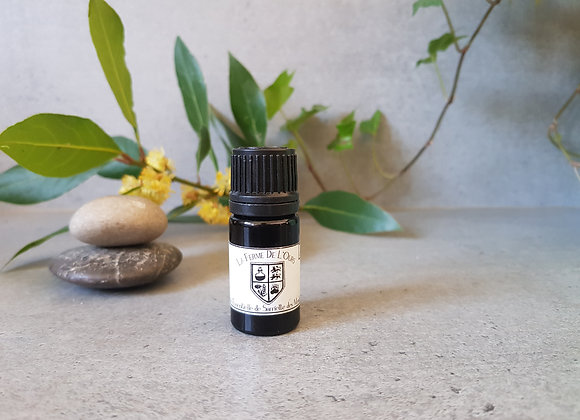 Sarriette des Montagnes Bio /  / Rosmarinus officinalis / Sommités Fleuries/5 ml