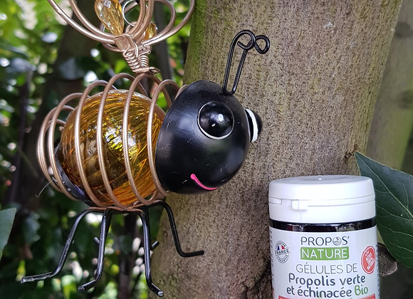 Propolis Verte et Echinadée Bio / 60 Gellules / 500 mg