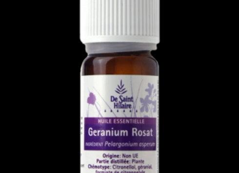 Géranium Rosat Bio  /  Pelargonium Rosat / 10 ml