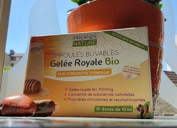 Ampoules Buvables Gelée Royale Bio / 10 Doses