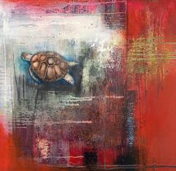 Turtle Dive 60 x 60cm £650 *