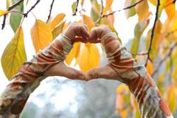 Silk Merino Gloves