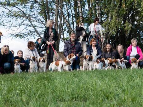 10. Koomeeting: setkání chovatelů a majitelů Kooikerhondje