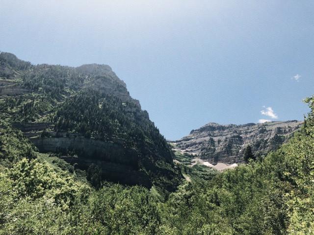 Timp Falls