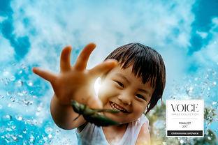 Voice Collection 2017 logo.jpg