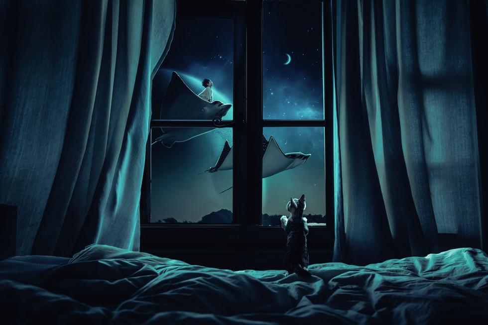 Sweet dreams!