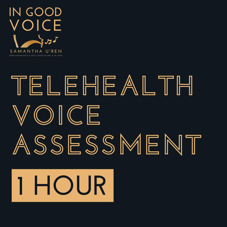 Telehealth Voice Assessment