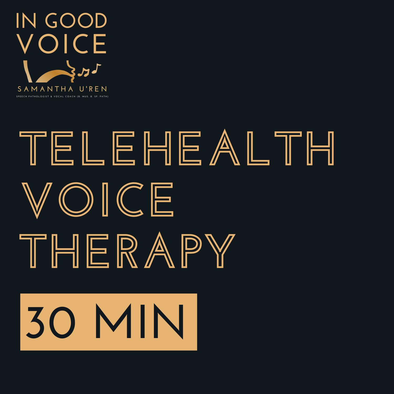 Telehealth voice therapy