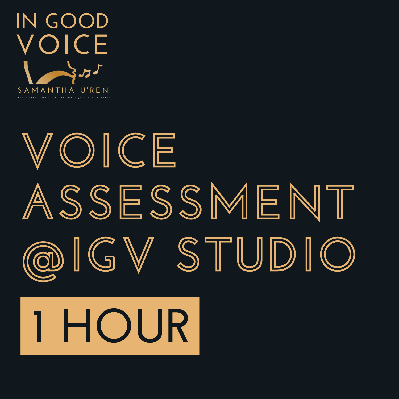 Voice Assessment IGV Studio