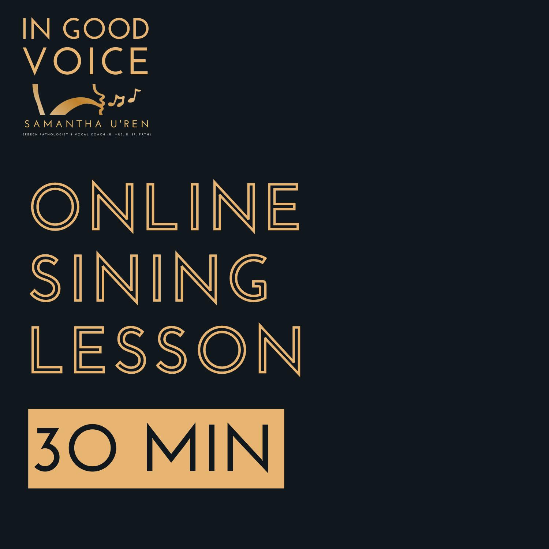 Online Singing lesson 30 mins