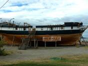 The HMS Beagle and You
