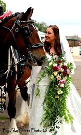 weddingaakd.jpg