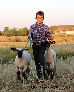 Connley and lambs aa.jpg
