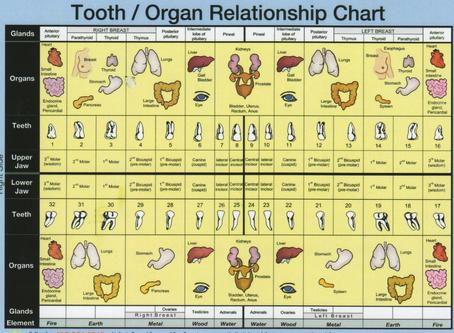 Diagnose 2, MOUTH