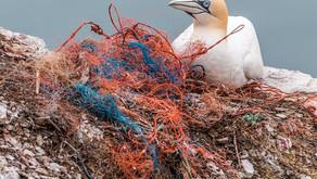 Circulan Ocean ecoinnovación en redes marinas desechables