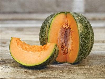 Melon - Petit Gris de Rennes
