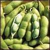 Soybean - Mix