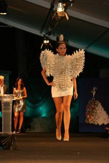 2011_Premio_Diseño_y_originalidad_Adulto